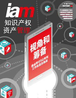Issue #IAM Chinese issue 7